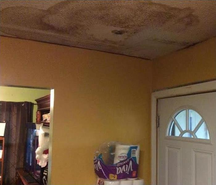 Mold In Taylorsville Before