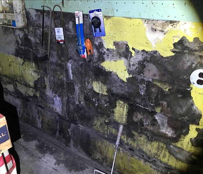 Rental Home Mold Remediation In Milton Before