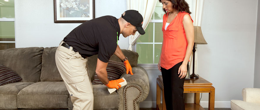 Shelbyville, KY carpet upholstery cleaning